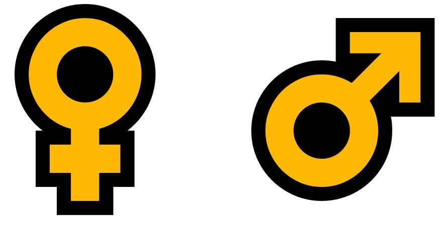 Männlich Weiblich Icon