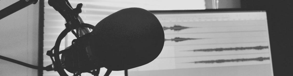Ein Mikrofon vor einem Monitor mit Schnittsoftware
